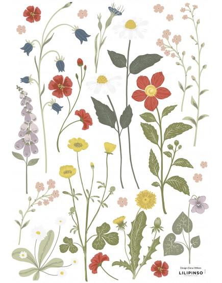 Pievų gėlės. Sienų lipdukai vaikams