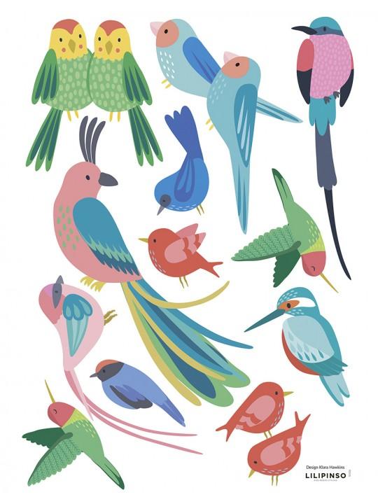Lipdukai interjerui. Egzotiniai paukščiai