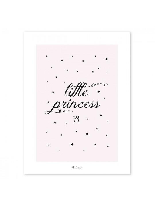 Mažoji princesė. Paveikslas
