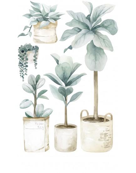 Augalai vazonose. Sienų lipdukai.