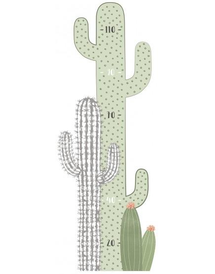 Ūgio matuoklė vaikams. Kaktusai